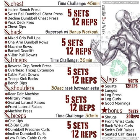 a bodybuilders diet plan workout routine