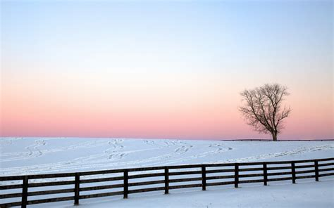wallpapers for home wall photo collection winter fence wallpaper