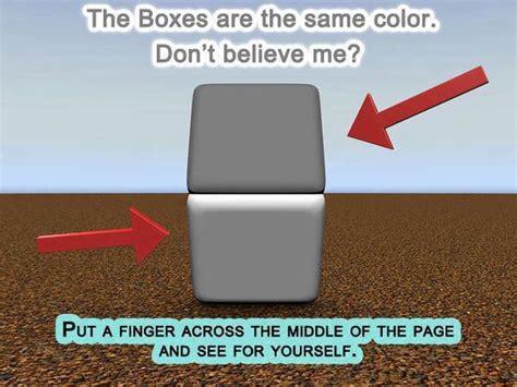 same color illusion same color boxes 1funny