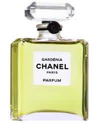 Review Of Chanels Gardenia Perfume by Chanel Gardenia Reviews Photo Makeupalley