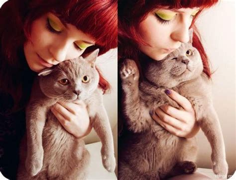 and cat cuddling cuddle cat 1funny