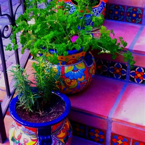 Mexican Planters Outdoor by 25 Best Ideas About Mexican Colors On Mexican
