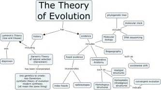 theory evolution
