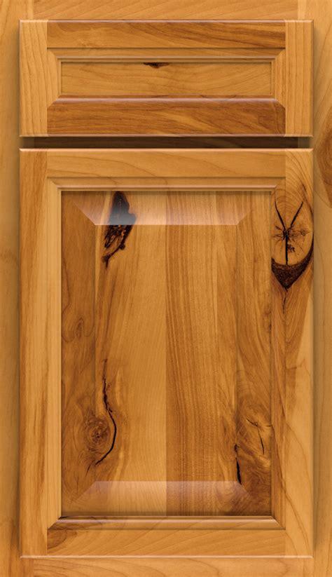 Plastic Kitchen Cabinet Doors Cabinet Door Plastic Cabinet Doors Target Cabinets Curio Cabinets Nc Link Pine Corner