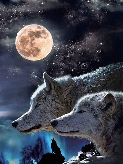wolf moon fantasy picture nu venture llc