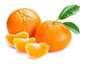 Lime Fruit Tree - mandarin jamaican tangerine mandarin