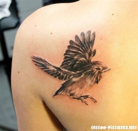 colorful bird tattoo designs 1000 ideas about colorful bird tattoos on