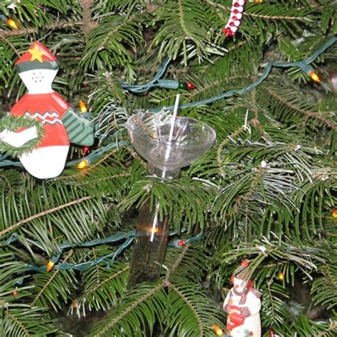 stay real christmas tree watering system sr003 free