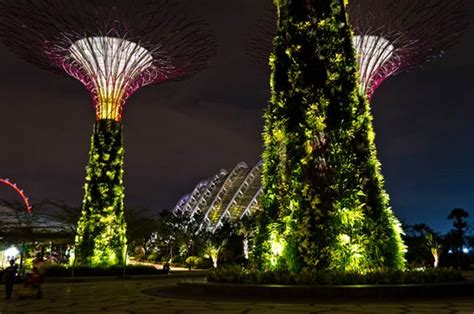 Singapore Vertical Garden Supertrees Of Singapore Solar Powered Tree Structure