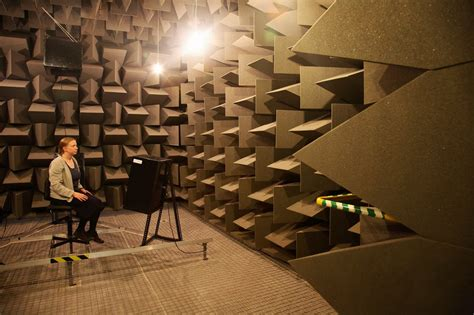 the chamber room does an anechoic chamber cause hallucinations the sound