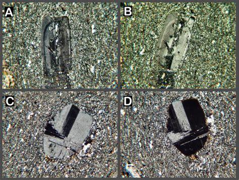 granodiorite thin section granodiorite thin section