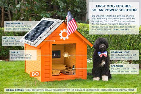 solar panel dog house white house addresses climate change first dog bo uses solar panels solar builder