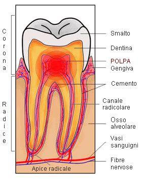 carie interna sintomi pulpite