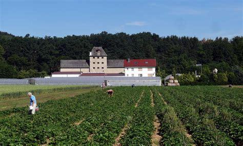 Gärtnerei Decke Wehretal hersteller regionale entdeckungen wmk