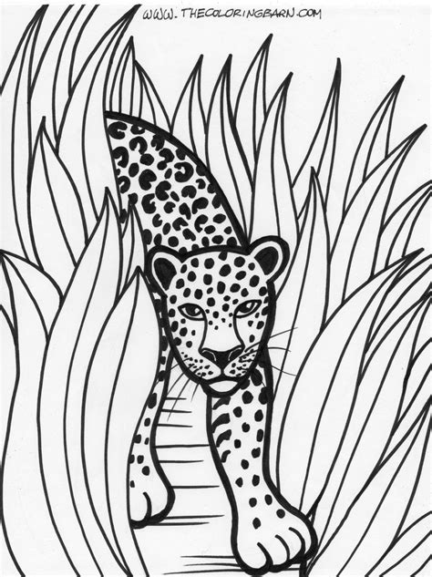 printable rainforest leaves rain forest trees coloring page coloring home