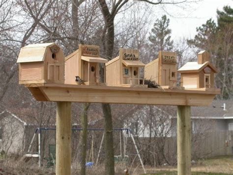 cool bird house plans 121 best images about bird houses on pinterest