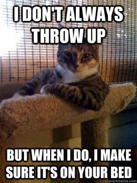 Pinterest Funny Memes - memes cats and cat memes on pinterest