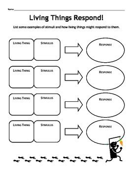 Stimulus And Response Worksheet Answers by Stimulus Response Worksheets Math Science Stimulus Best