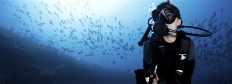 Freediving Open Water Course open water diver course 187 scuba dive courses cape town