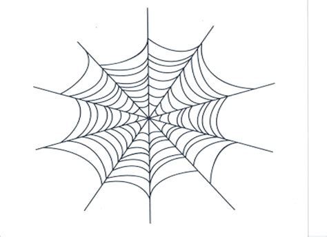 drawing web page how to draw template spider