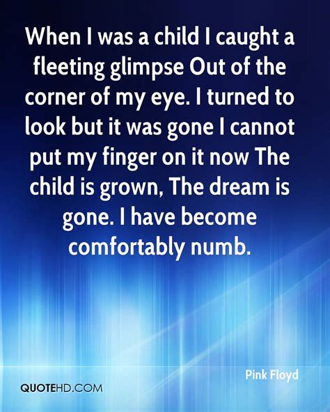 pink floyd comfortably numb meaning pink floyd quotes quotehd