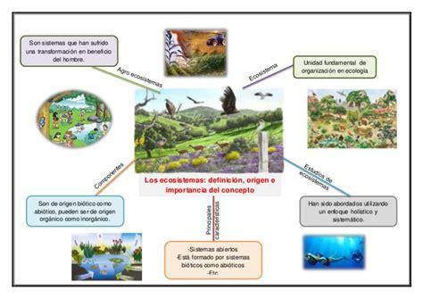 imagenes mentales integradoras mapas mentales