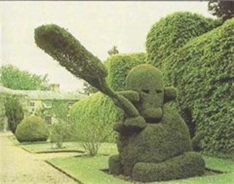 topiary monkey topiary hedging
