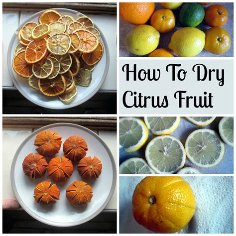 how to dry citrus fruit for making christmas decorations