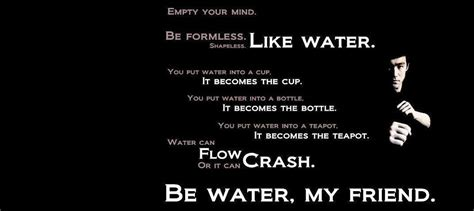 bruce water quote bruce quotes water quotesgram
