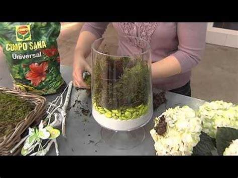 decorar de english decoraci 243 n con plantas en recipientes de cristal plantas