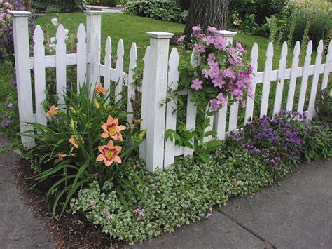 idea giardino piante da giardino idee per un nuovo look veramente originale