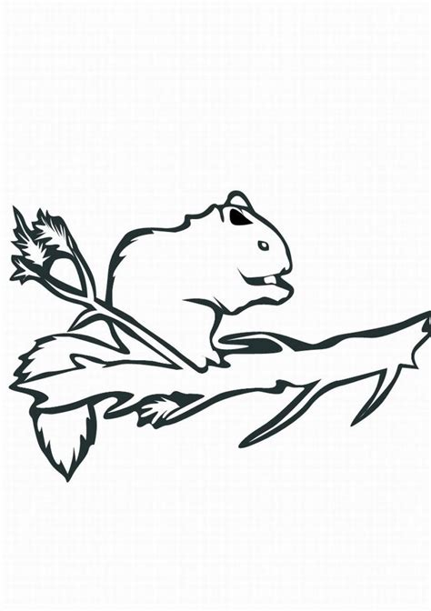coloring pages of animals that hibernate animals that migrate in winter coloring pages coloring