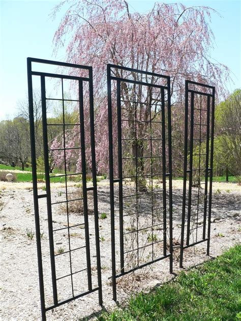 backyard trellis designs 25 best ideas about metal trellis on pinterest metal
