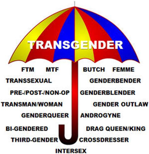 faq gender identity disorder the national catholic is transgenderism a mental disorder or a right u s