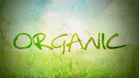 What Does Organic Really Mean, and Is It Worth My Money?