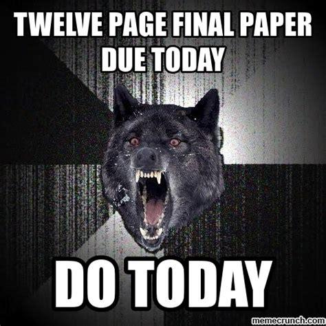 Insane Wolf Meme - insanity wolf meme memes