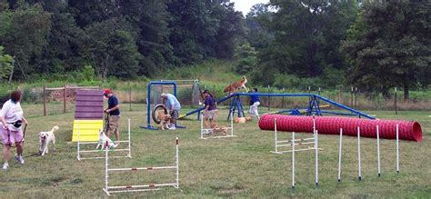 agility course agility atlanta trainer llc