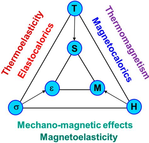 the coupled magnetic field effects on the microstructure micromachines free full text magnetic shape memory