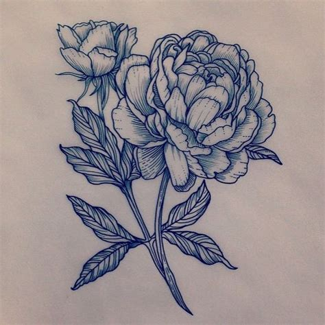peony rose tattoo tattoos design peonies flower and