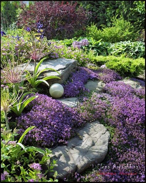 303 Best Images About Rock Gardens Ground Covers On Beautiful Rock Gardens