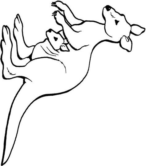 kangaroo rat coloring page shkangaroo rat colouring pages