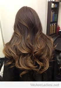 Dark brown ombre hair color