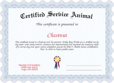 Certified Service Animal Certificate Created With Certificatefun Com Service Animal Certificate Template