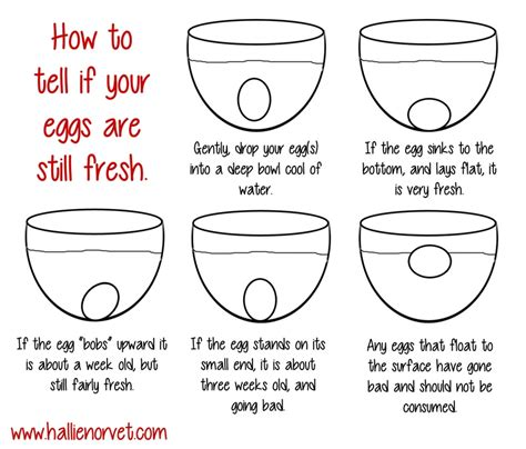 how can i tell if how to tell if your eggs are still fresh