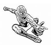 Spiderman Da Colorare Disegni Stampare Gratis