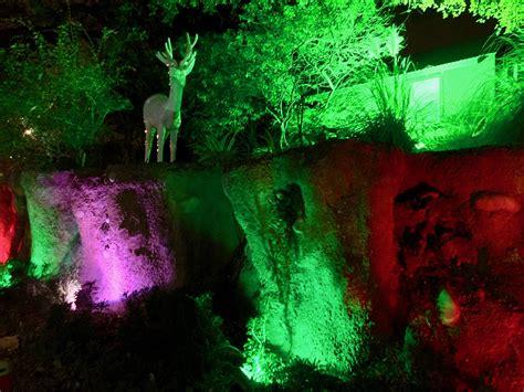 san antonio zoo lights 2016 amanda l