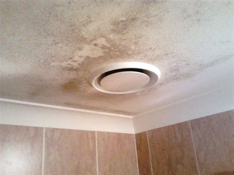 mildew in bathroom ceiling cleaning bathroom mold on ceiling ideas pinterest