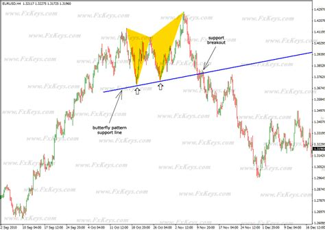 bat pattern trading butterfly and bat patterns in forex market