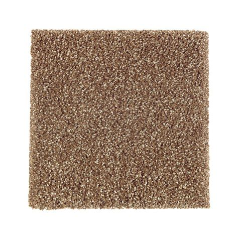 Pet Proof Rugs by Petproof Carpet Sle Whirlwind Ii Color Montebello