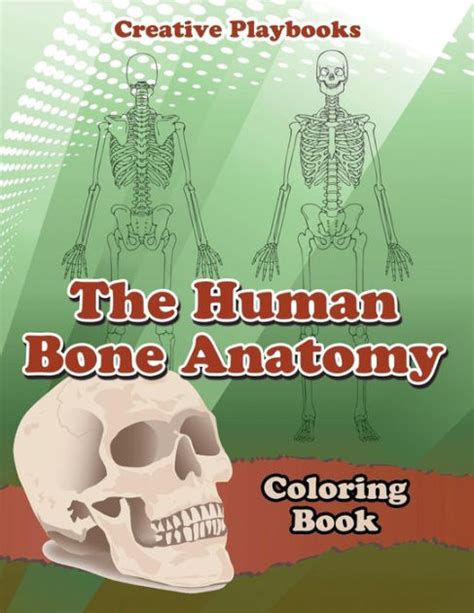 anatomy coloring book barnes and noble the human bone anatomy coloring book by creative playbooks